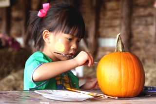 Pumpkin Patch 09 Painting Pumpkin